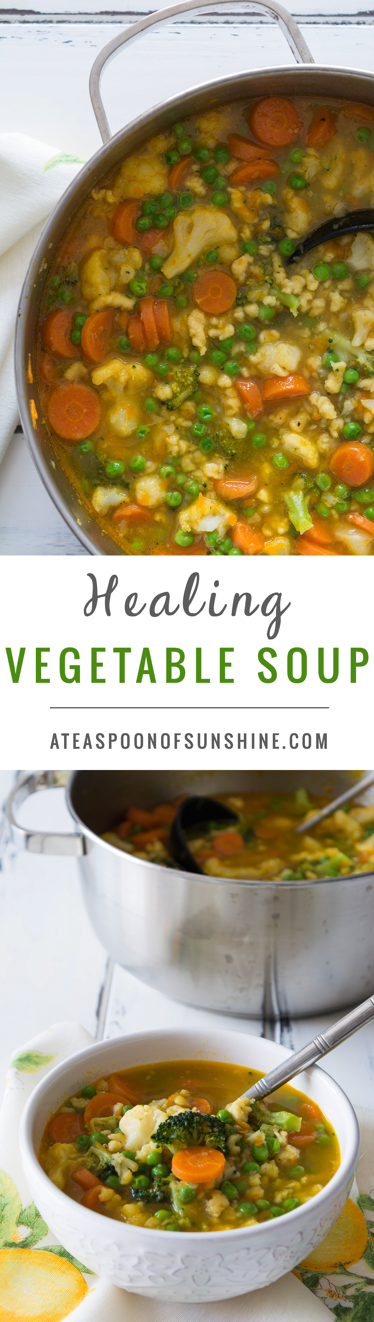 Healing Vegetable Soup
